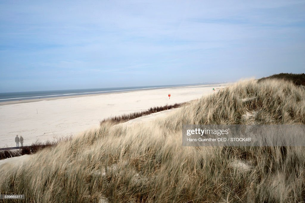 Dune on island Juist, Lower Saxony, Germany