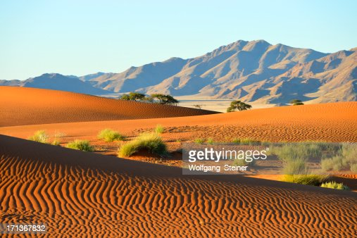 Dune riples in front of a mountain range