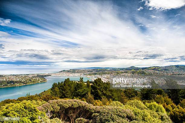 Dunedin and Otago Harbour seen from Signal Hill