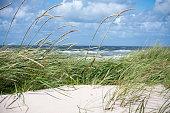 Dunes at the North Sea