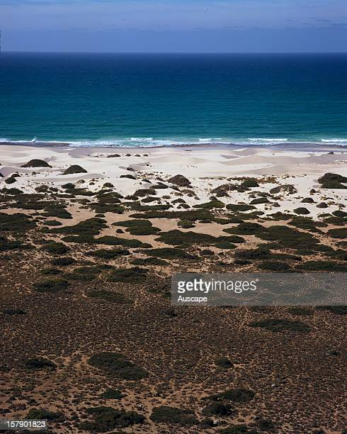 Dunes and the Great Australian Bight Nullarbor National Park South Australia