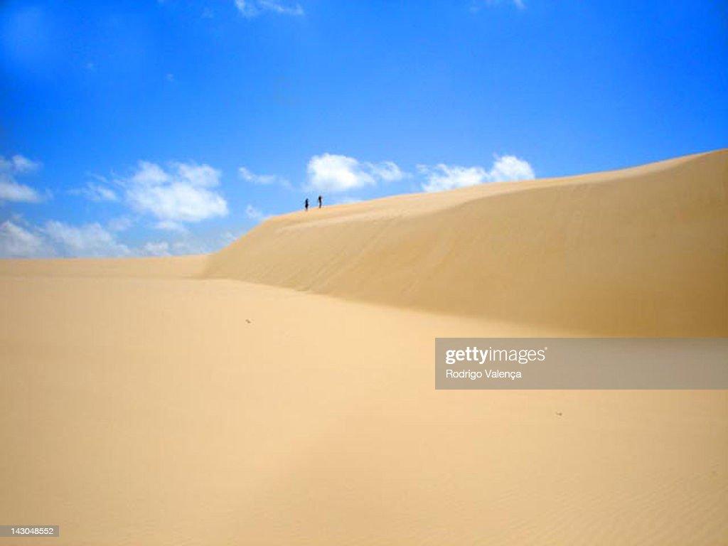 Dunes : Stock Photo