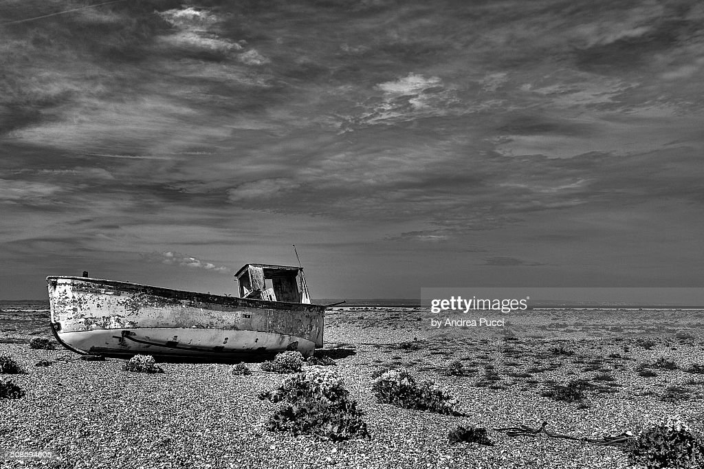 Dungeness : Stock Photo