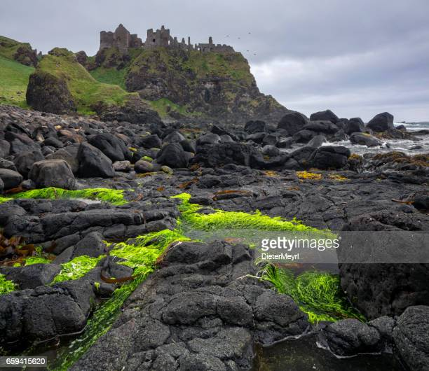 Dunluce castle on edge of cliff, Ireland