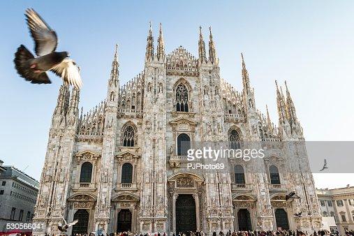 Duomo of Milan and pigeons