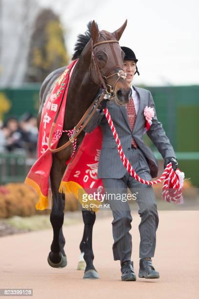 Duramente wins the Race 11 Nakayama Kinen at Nakayama Racecourse on February 28 2016 in Funabashi Chiba Japan
