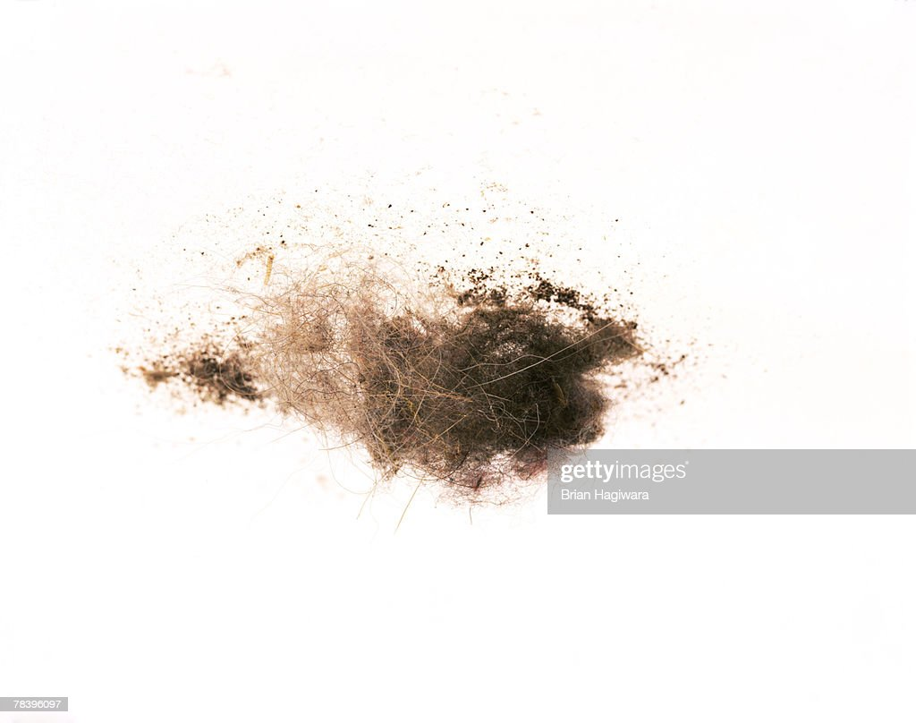 Dust and dirt : Stock Photo