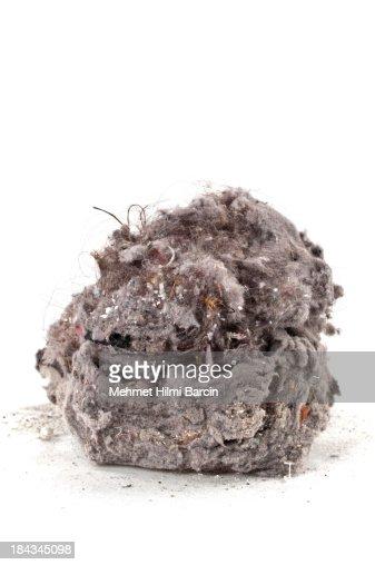 Dust Heap