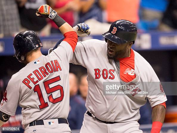 Dustin Pedroia of the Boston Red Sox celebrates with David Ortiz after hitting a grand slam against the Tampa Bay Rays in the seventh inning on...
