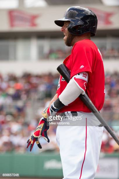 Dustin Pedroia of the Boston Red Sox puts his Franklin batting gloves on during the spring Training game against the Team USA at Jet Blu Park on...