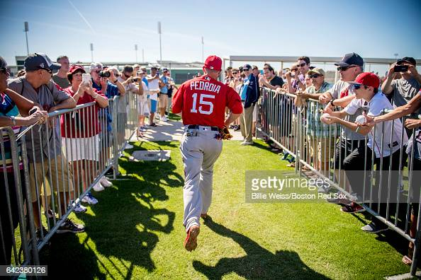 Dustin Pedroia of the Boston Red Sox runs between fields during a team workout on February 17 2017 at Fenway South in Fort Myers Florida