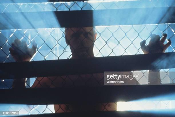 Dutch actor Rutger Hauer as replicant Roy Batty in a scene from Ridley Scott's futuristic thriller 'Blade Runner' 1982