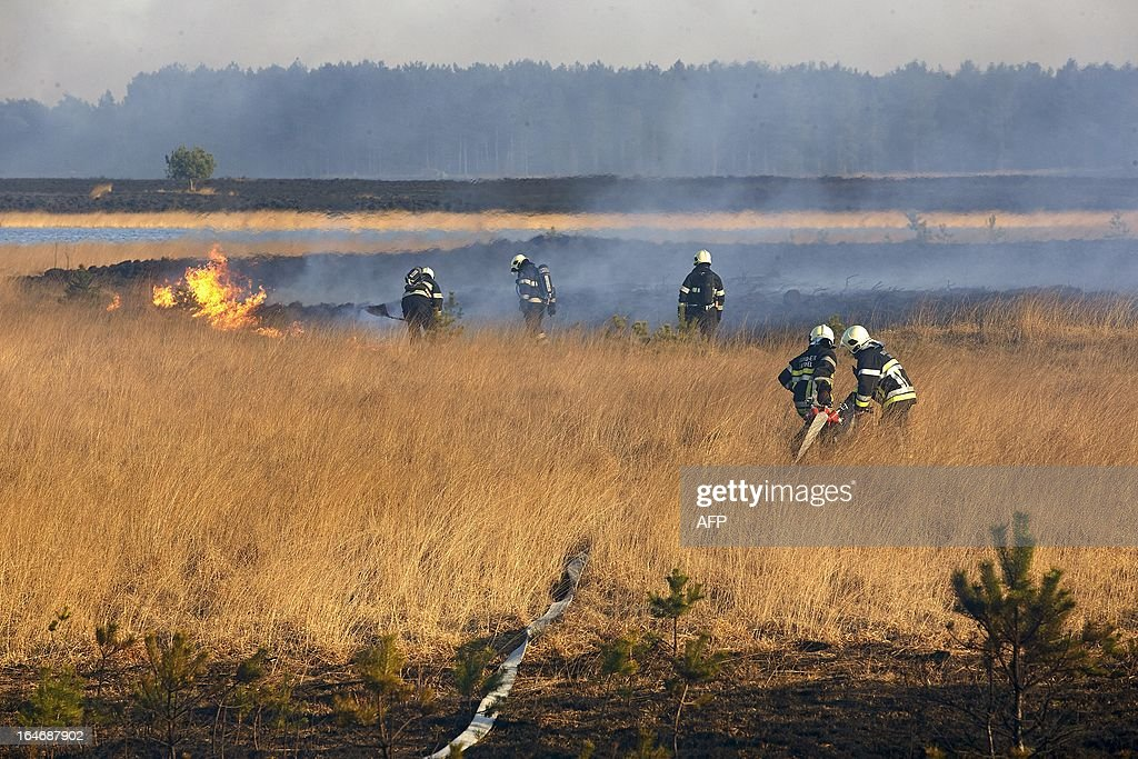 Dutch and Belgian firefighters work on March 26, 2013 to extinguish a large fire on a heath in the Leenderbos near the southern Dutch town of Leende. Twenty-five hectares of land near the Belgian border are on fire. HOLLEMANS - netherlands out -