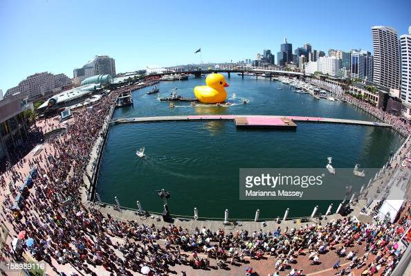 Dutch artist Florentijn Hofman's giant Rubber Duck enters Cockle Bay Wharf on opening day of the Sydney Festival January 5 2013 in Sydney Australia...