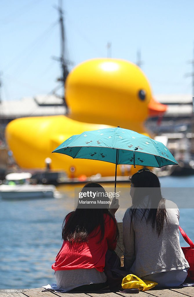 Dutch artist Florentijn Hofman's giant Rubber Duck enters Cockle Bay Wharf on opening day of the Sydney Festival January 5, 2013 in Sydney, Australia. Sydney festival opening, previously 'Sydney Festival First Night', was scaled back from previous years, when crowds reached as many as 60,000 for the launch.