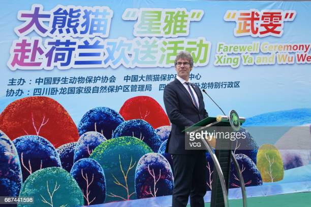 Dutch Consulgeneral to Chongqing Koen Sizoo speaks during a ceremony for giant pandas Xing Ya and Wu Wen who will leave for Netherlands on April 11...