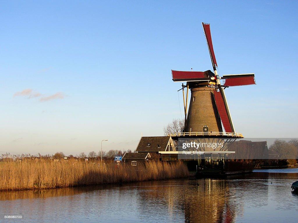 Moulin néerlandais maïs sur le canal : Photo