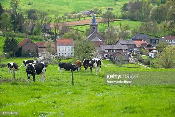 Dutch Countryside