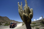 Dutch driver Rene Kuipers competes during the Stage 6 of the Dakar 2014 between Tucuman and Salta Argentina on January 9 2014 AFP PHOTO / FRANCK FIFE