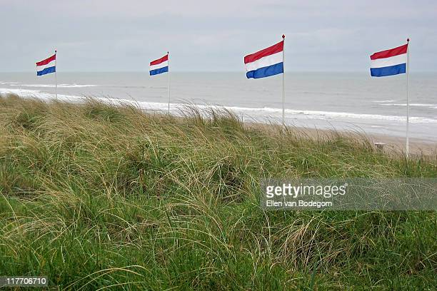 Dutch flags on beach
