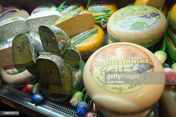 Dutch gouda and other cheeses lie on display at the 2013 Gruene Woche agricultural trade fair on January 18 2013 in Berlin Germany The Gruene Woche...
