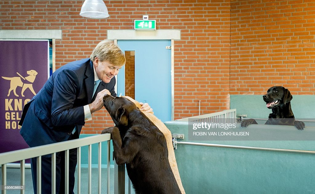 Dutch King Willem-Alexander attends the opening of the first guide dog experience at the kennels of the Royal Dutch Guide Dog Foundation in Amstelveen, on November 4, 2015.
