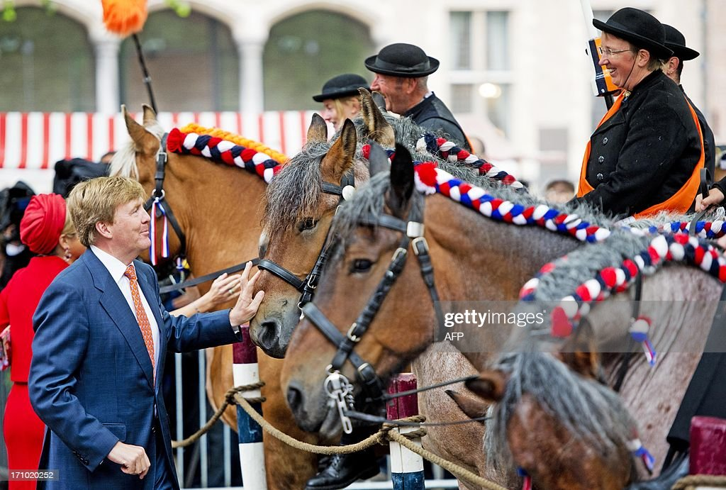 Dutch King Willem-Alexander (L) pets a horse on June 21, 2013 Middelburg in Zeeland province -- the last stop of the Dutch royals' tour to all 12 Dutch provinces to give people a chance to meet the new king and queen. WEEL- netherlands out -