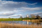 Dutch landscape showing a windmill