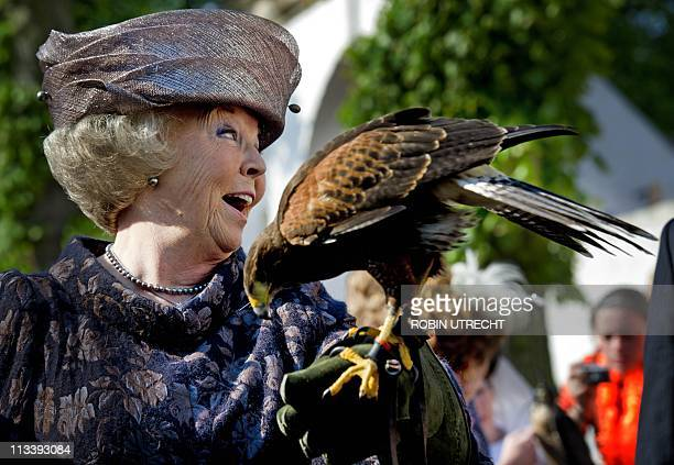 Dutch Queen Beatrix holds a Harris Hawk during the Queensday celebration in Thorn on April 30 2011 AFP PHOTO/ANP/POOL/ROYAL IMAGES/ROBIN UTRECHT...