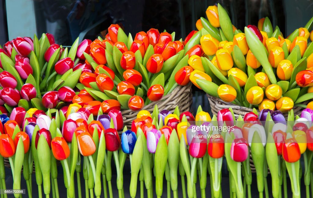 Dutch souvenir tulips : Stock Photo