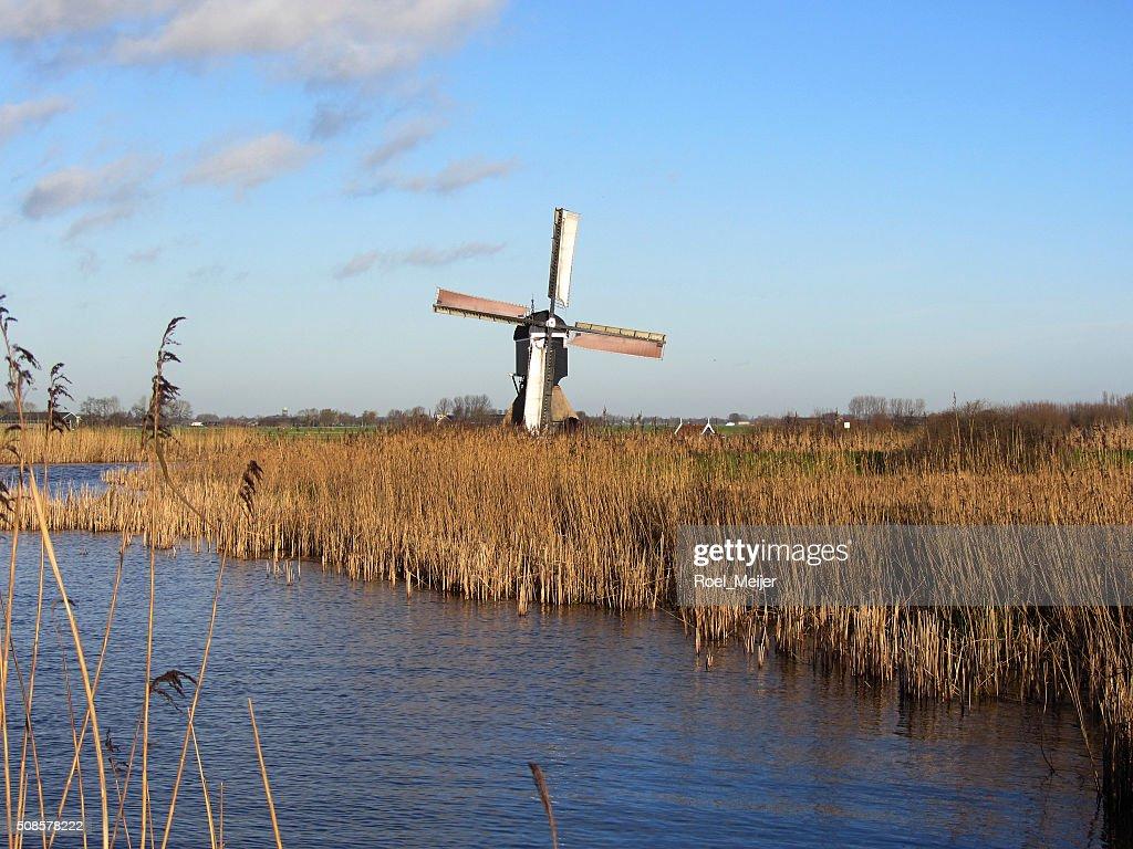 Dutch windmill along canal : Stock Photo