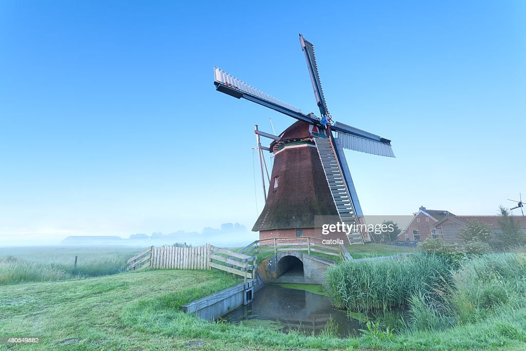 Dutch windmill in morning : Stock Photo