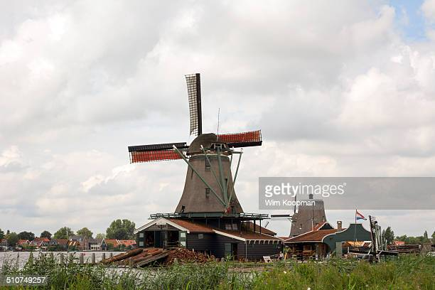 Dutch windmill with tree logs in front