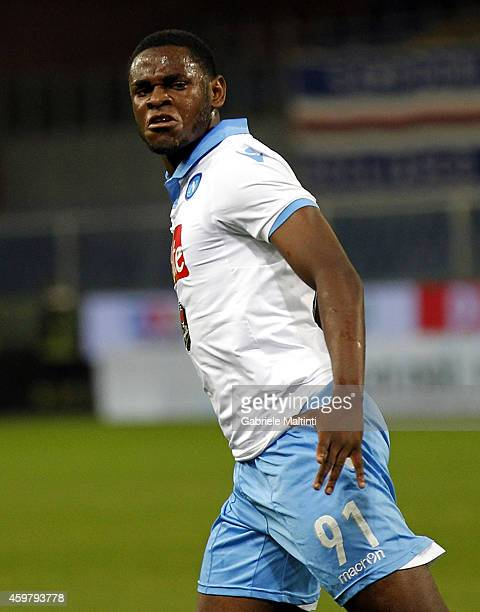 Duvan Zapata of SSC Napoli celebrate a goal during the Serie A match between UC Sampdoria and SSC Napoli at Stadio Luigi Ferraris on December 1 2014...