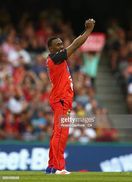 Dwayne Bravo of the Renegades takes a catch off his own bowling to dismiss Jono Dean of the Stikers during the Big Bash League match between the...