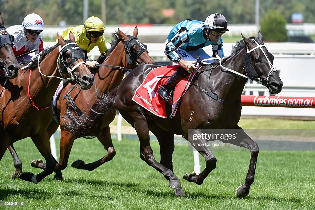 <a gi-track='captionPersonalityLinkClicked' href=/galleries/search?phrase=Dwayne+Dunn&family=editorial&specificpeople=877062 ng-click='$event.stopPropagation()'>Dwayne Dunn</a> riding Black Jag wins Race 2, during Melbourne Racing at Caulfield Racecourse on February 6, 2016 in Melbourne, Australia.