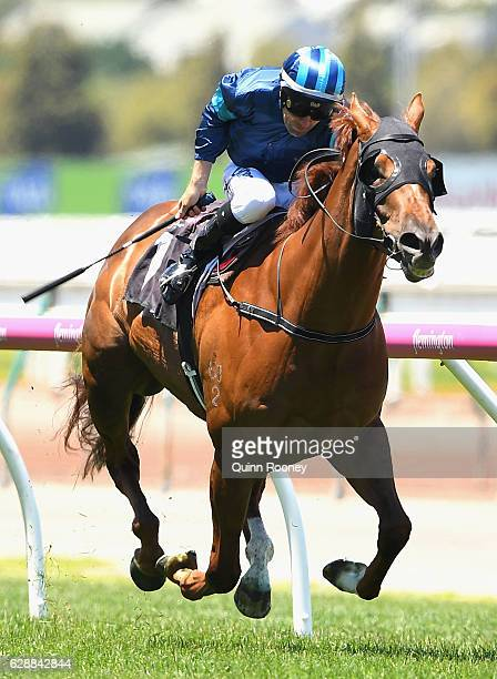 Dwayne Dunn riding Electric Tribute wins Race 2 the Cafe Adamo Handicap during Melbourne Racing at Flemington Racecourse on December 10 2016 in...