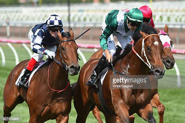 Dwayne Dunn riding Headwater defeats Craig Williams riding Bullpit in Race 7 the Kensington Stakes during Melbourne Racing at Flemington Racecourse...