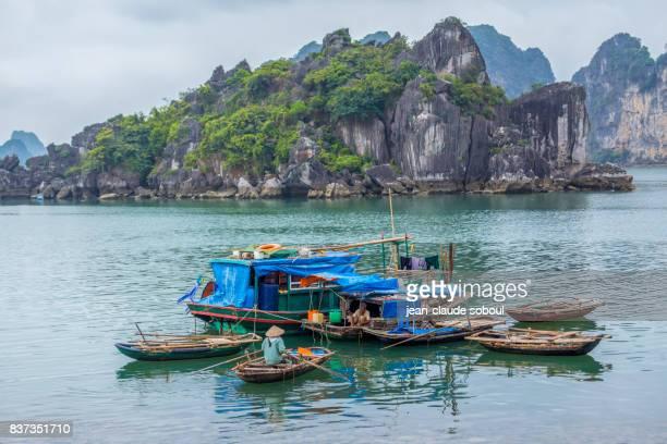 A dwelling place of Fisherman, in Ha Long (Vietnam)