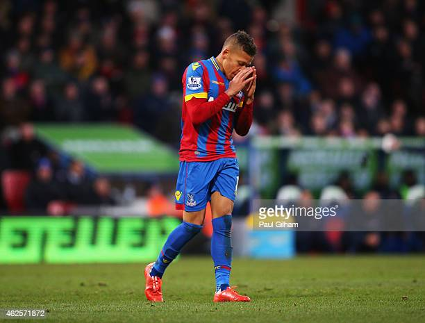 Dwight Gayle of Crystal Palace reacts after a missed opportunity during the Barclays Premier League match between Crystal Palace and Everton at...
