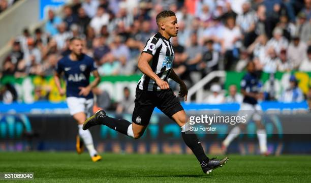 Dwight Gayle of Newcastle in action during the Premier League match between Newcastle United and Tottenham Hotspur at St James Park on August 13 2017...