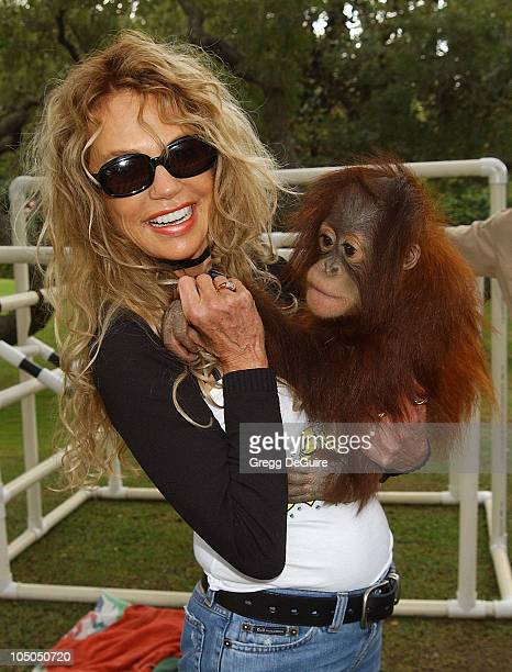 Dyan Cannon Peebles the Orangutan during Wildlife Waystation Presents The 8th Annual Safari Brunch at Private Home in Pasadena California United...