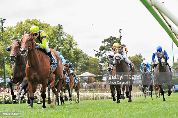 Dylan Dunn riding Flying Light wins Race 4 during Melbourne Racing at Moonee Valley Racecourse on January 23 2016 in Melbourne Australia