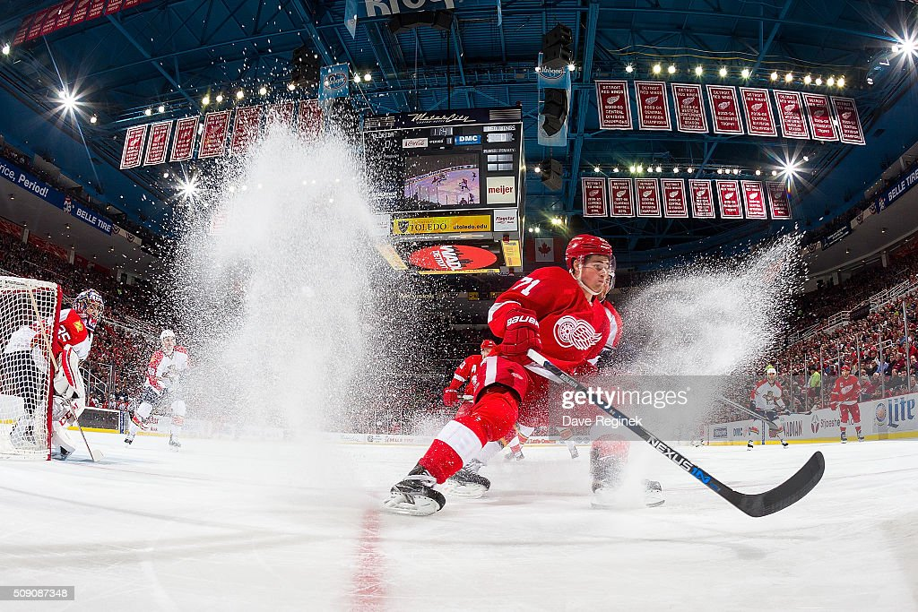 <a gi-track='captionPersonalityLinkClicked' href=/galleries/search?phrase=Dylan+Larkin&family=editorial&specificpeople=12867695 ng-click='$event.stopPropagation()'>Dylan Larkin</a> #71 of the Detroit Red Wings stops and follows the play during an NHL game against the Florida Panthers at Joe Louis Arena on February 8, 2016 in Detroit, Michigan.