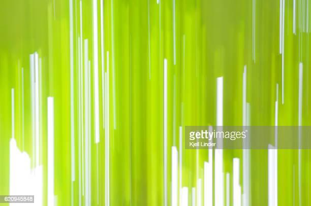 Dynamic green background
