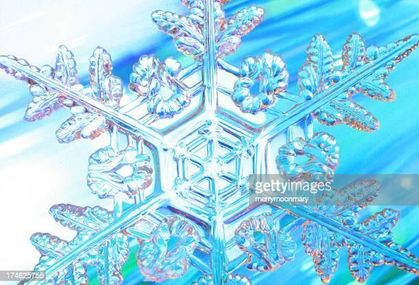 Dynamic Snowflake