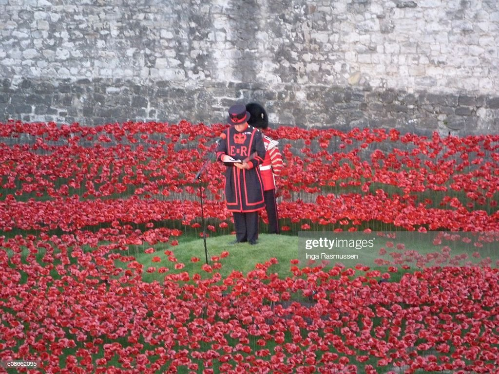 Each night names of fallen soldiers are read out at the evolving installation 'Bloodswept Lands and Seas of Red' marking the centenary of the outbreak of the First World War at Tower of London, United Kingdom.