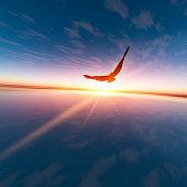 An Eagle against horizon sun, 3D rendering
