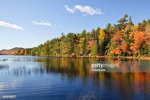 Eagle Lake Autumn morning, Acadia National Park