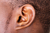 Ear close up